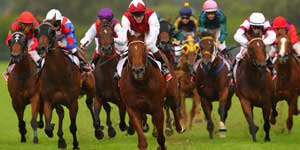 Executive Travel to the Races